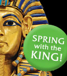 King Tut Special Offers